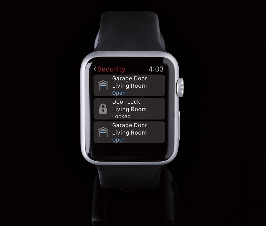 iwatch_security (Medium)